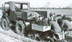 Nach dem Zweiten Weltkrieg begann die Mechanisierung in großem Umfang. Doch noch immer setzt die Hand des Menschen die Pflanzen in den Boden
