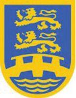 Unter den beiden schleswigschen Löwen zeigt das Wappen des BDN eine Brücke. Sie steht für den Wunsch, als Bindeglied von Deutsch und Dänisch im Grenzland zu wirken