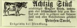 Die (Klein-)Bahn als Schrittmacher der neuen Zeit. Anzeige aus dem Landwirtschaftslichen Wochenblatt von 1884.