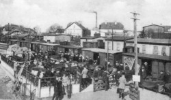 Mit den Kleinbahnen begann auch der Versandhandel der Landwirtschaft. Neben Meiereiprodukten wurde vor allem Vieh auf die Reise geschickt. Das Bild entstand 1927 in Sörup beim Verladen von Vieh für Rumänien.