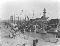 1922: Rausgeputzt zur Kutterregatta im Büsumer Hafen. Nach dem Ersten Weltkrieg erreichte die Flotte eine beachtliche Größe