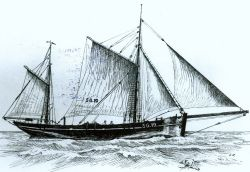 Mit Loggern wie der SG 19 begann die Heringsfischerei in Glückstadt. Das Schiff wurde 1906 gebaut und sank 1914.