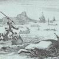 Beitragsbild für Walfang